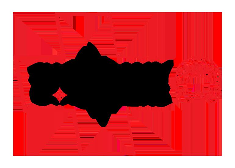 Swiss Rally Codrivers – La plateforme Suisse qui référence les copilotes